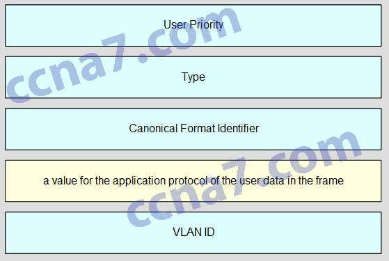 CCNA2 v6.0 Chapter 6 Exam A001